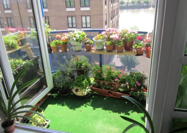 Balcony Garden Design Ideas | My Daily Magazine – Architecture
